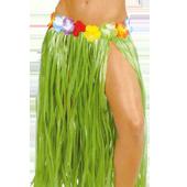Accessoires pour fête hawaïenne