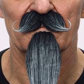 Barbas de mosqueteros