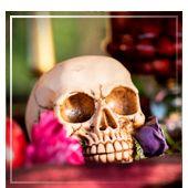 Calaveras y esqueletos de Halloween