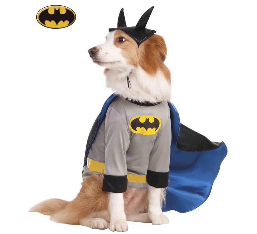 Disfraz Batman para perro