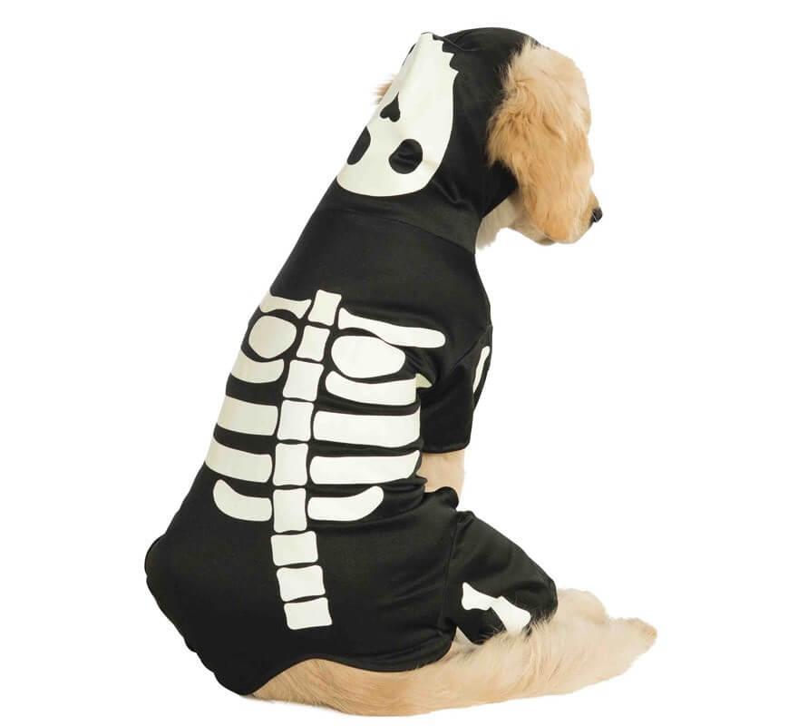 Disfraz Esqueleto brilla en la oscuridad para perro