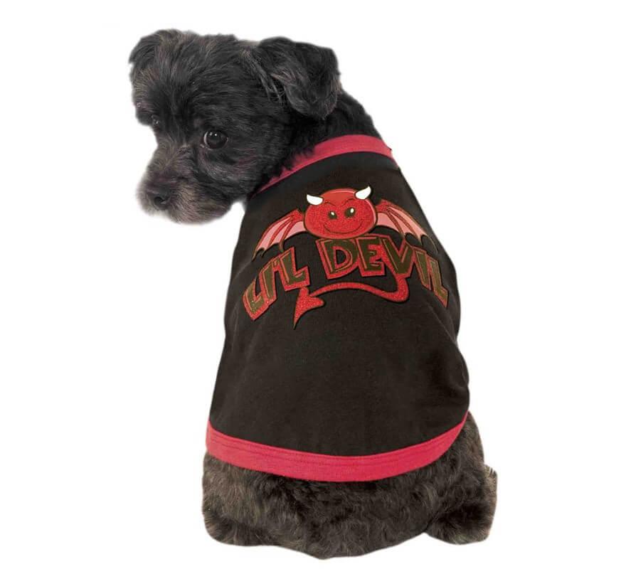 Disfraz Little Diablo para perro