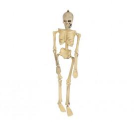 Esqueleto 43 cm
