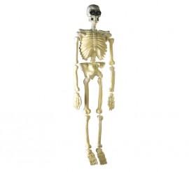 Esqueleto fluorescente 90 cms decoración Halloween