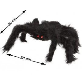 Araignée Poilue Noire de 20x28 cm