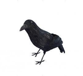 Cuervo Negro con plumas 33cm