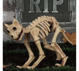Esqueleto de Gato 32 Cm