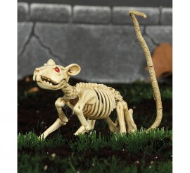 Esqueleto de Rata 20 Cm