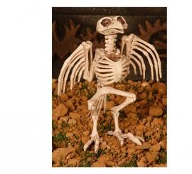 Esqueleto Pájaro 20 cm