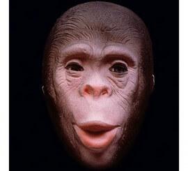 Careta de Mono de goma