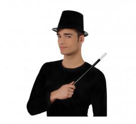 Set de Mago con Sombrero de Copa y Varita