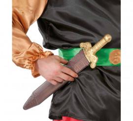 Espada Romano o Galo 48 cm.