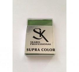 Cajita de Maquillaje Profesional Verde Oscuro de 12 gr.