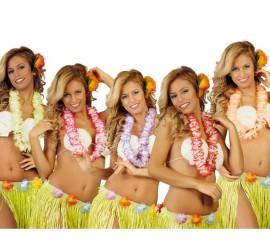 Collier Hawaïen Fleurs plusieurs coloris