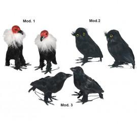 Pájaros variados para decoración de Halloween