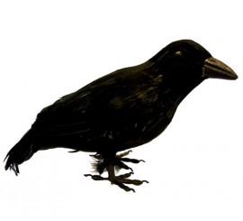 Cuervo negro de 27cm para decoración de Halloween