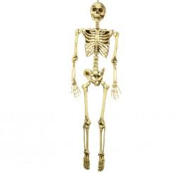 Colgante Esqueleto de 160 cm para Halloween