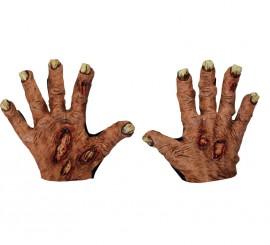 Manos Zombie Flesh para Halloween