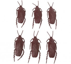 Pack de 6 Cucarachas