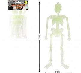 Pack de 6 Esqueletos Fluorescentes 29X13 cm