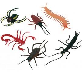 Pack de 6 Insectos surtidos
