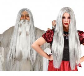 Perruque Longue de Sorcière Grise Halloween