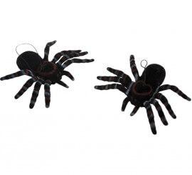 Set de 2 Arañas de 8x11 cm