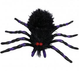 Araña Negra y Morada de 18x12 cm