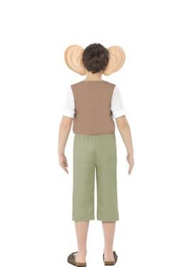 Disfraz del Gran Gigante Bonachón de Roald Dahl Verde para niño